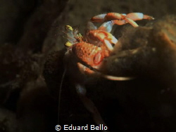 Just behind a pilar by Eduard Bello