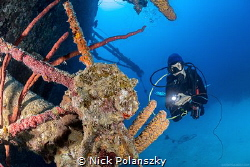 Scuba Diver checking out whats left of the wheel on the w... by Nick Polanszky