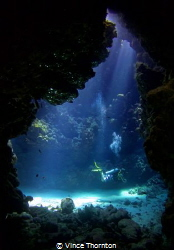 Inside one of the St Johns cave swim throughs in the Sout... by Vince Thornton