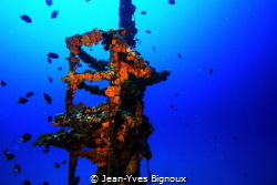 Viewing mast of the Jebedah shipwreck 18 metres. Jean-Yv... by Jean-Yves Bignoux