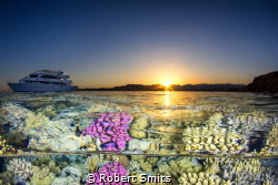 The Red Sea in Egypt holds a lot of nice views, above and... by Robert Smits