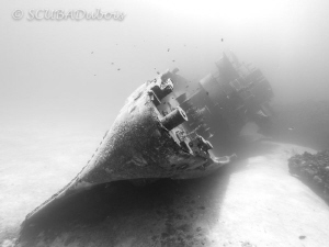 The USS Kittiwake has a ghostly feeling in black and whit... by Dwayne Dubois