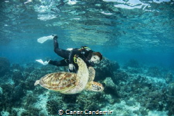 My wife and Green sea Turtle by Caner Candemir