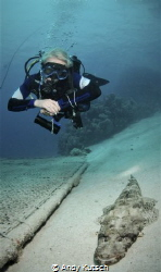 diver and crocodilefish by Andy Kutsch