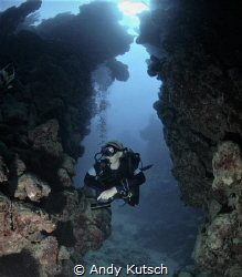Diver in the red sea by Andy Kutsch