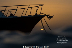 """""""Sunset Sunset"""" - Surfaced to this stunning sunset at Sun... by Susannah H. Snowden-Smith"""