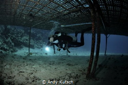 Diver under plattform by Andy Kutsch