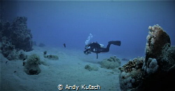 Diver on the reef by Andy Kutsch