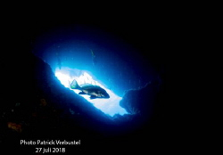 Into the blue by Patrick Verbustel