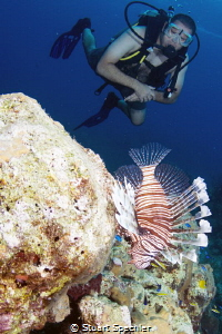 Diver cautiously approaching a beautiful but unwelcome in... by Stuart Spechler
