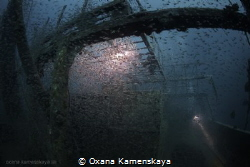 Wreck Mohammed Hasabella, Glasslfish close the stern. by Oxana Kamenskaya
