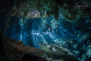 Swiming Cenote Playa del Carmen Mexico