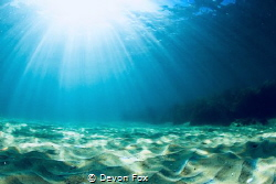 Sun rays/ The beautiful, vast sandy bottom. by Devon Fox