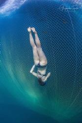 Freediver on the Cage, La Paz México by Alejandro Topete