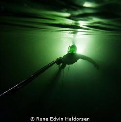 From the light by Rune Edvin Haldorsen