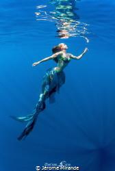 Mermaid dream by Jérome Mirande