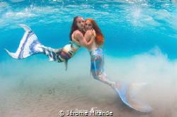Mermaid life by Jérome Mirande