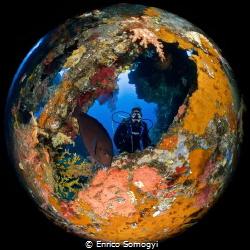 Round World Underwater by Enrico Somogyi