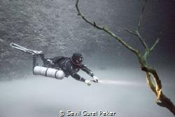 Cenote Angelita, 30 meters depth, on a layer of hydrogen ... by Sevil Gurel Peker