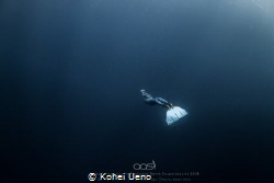 Taken on a single breath with a wide fisheye lens, a free... by Kohei Ueno