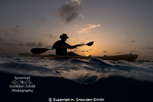 """Searching For Mating Turtles At Sunset"" - When the green... by Susannah H. Snowden-Smith"