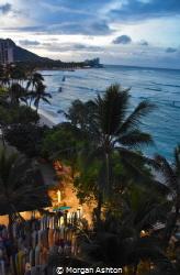 Waikiki by Morgan Ashton