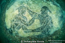 This is the image of the mosaic of the pancraziasti repre... by Immacolata Moccia