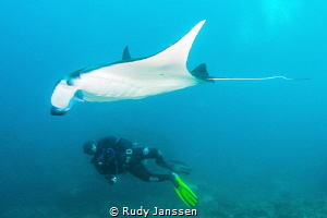 Manta with diver by Rudy Janssen