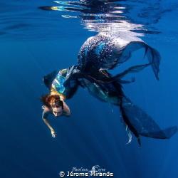 Bird  Modele mermaid celine by Jérome Mirande