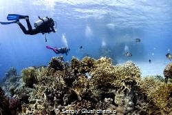 Red Sea by Sergiy Glushchenko