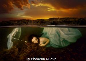 In the sunset by Plamena Mileva