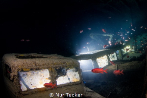 SS Thistlegorm Wreck, Red Sea, The hall carrying vans to ... by Nur Tucker