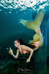 Mermaid Céline @ TODI, Belgium. by Filip Staes