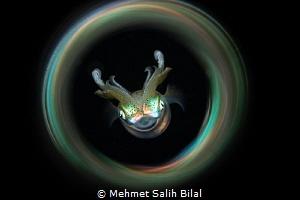 Squid with magic tube. by Mehmet Salih Bilal