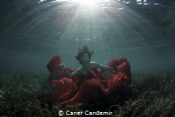 Underwater Fashion by Caner Candemir