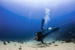 While diving, can happen to get current aside...that's th... by Marco Calvani