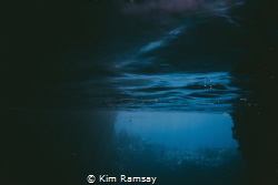 The stillness of Swallows Cave - Tonga by Kim Ramsay