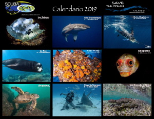 Calendar 2019, Mexico by Alejandro Topete