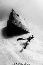 Diver on El Vencedor Shipwreck by Henley Spiers