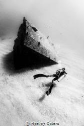 Diver on El Vencedor Shipwreck by Henley Spiers