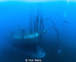 Wiebeke wreck and diver, St Lucia. by Nick Blake