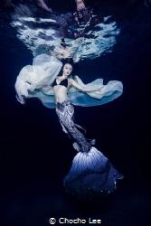 Mermaid Fairy by Chocho Lee