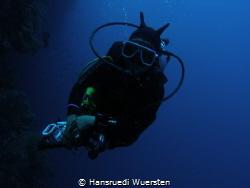 Nudibranch with camera by Hansruedi Wuersten