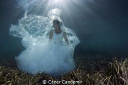 Underwater Wedding Shot by Caner Candemir