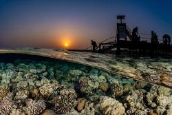 A Sunset Dive by Nadya Kulagina