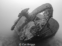 The Thistlegorm by Cat Briggs