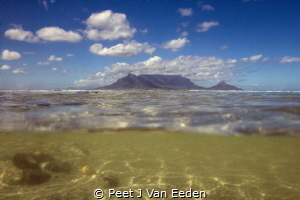 Underwater Cape Town