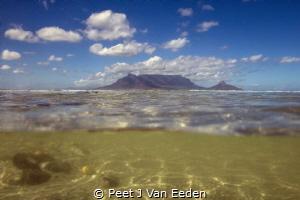 Underwater Cape Town  Table Mountain one of the seven w... by Peet J Van Eeden