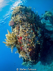 Blunt ... !