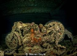 Wreck of the SS Thistlegorm, Red Sea, Egypt. BSA motorbik... by Steven Doyle